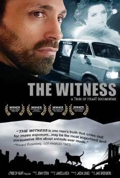 Film_poster_for_the_movie_The_Witness_made_in_2000